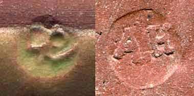 Rectangular Winchcombe dish (marks)