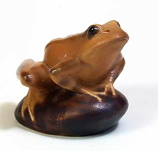 Purbeck frog