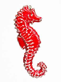 Paula Humphris seahorse