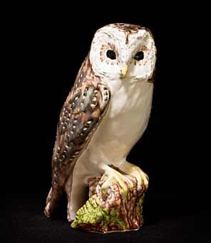 Paula Humphris barn owl