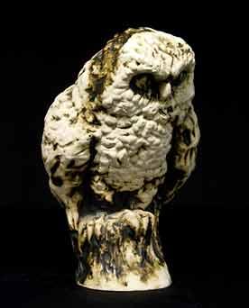 Morgan / Hubbard owl