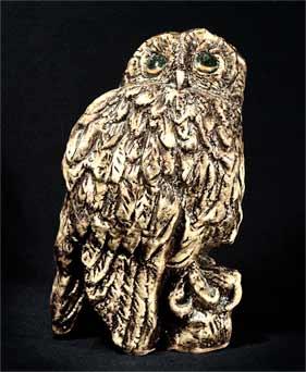 Paula Humphris tawny owl
