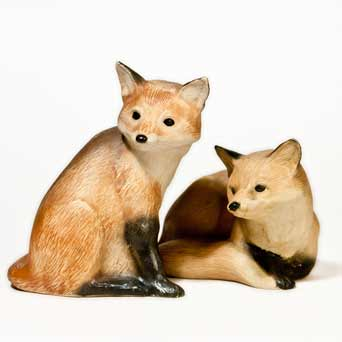 Purbeck foxes