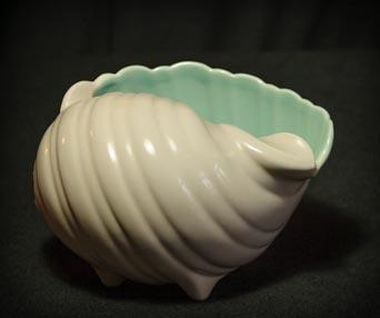 Poole winkle shell